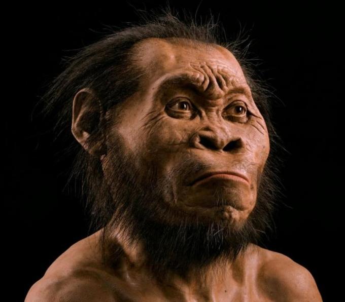 """<p> <span style=""""color:rgb(0,0,0);"""">Chân dung Homo naledi - họ hàng mới của loài người. Ảnh:<em> National Geographic</em></span></p> <p> <span style=""""color:rgb(0,0,0);"""">Đứng đầu danh sách 10 loài mới phát hiện 2015 do tạp chí <em>Time </em>bình chọn là họ hàng mới của loài người - Homo naledi ở Nam Phi. Một nhóm chuyên gia gồm hơn 60 nhà khoa học, đứng đầu là nhà khảo cứu cổ sinh vật nhân chủng học người Mỹ Lee R. Berger đã công bố phát hiện này vào tháng 9/2015.</span></p>"""