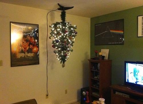 Biện pháp giúp cây thông mừng Giáng sinh luôn rực rỡ.