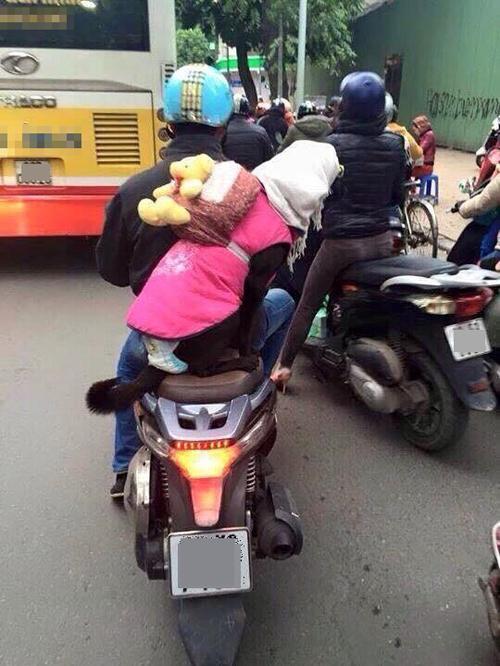 Cún cưng cũng được cậu chủ trang bị đồ chống rét.
