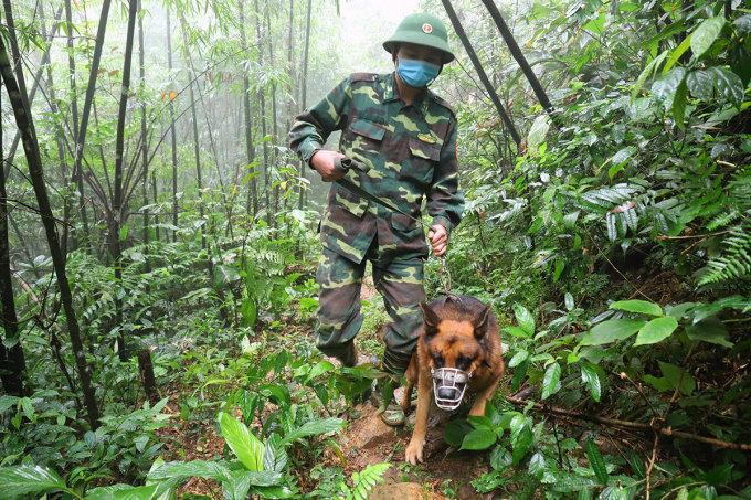 Chiến sĩ ở chốt phòng dịch dắt chó nghiệp vụ đi tuần tra chống người vượt biên. Ảnh: Đức Hùng.