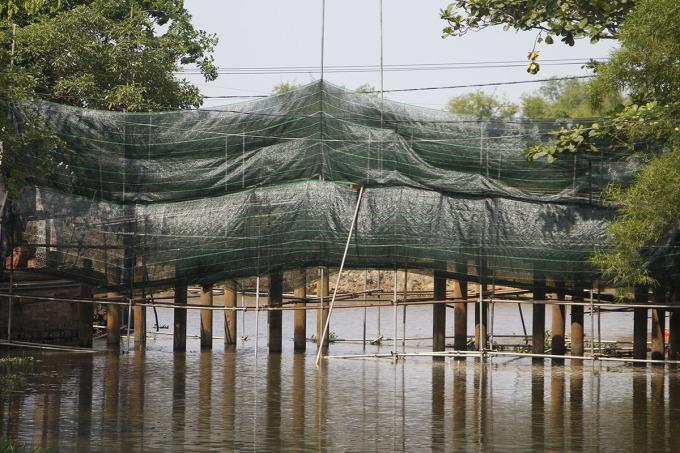 Cầu ngói Thanh Toàn được rào chắn để thi công. Ảnh: Võ Thạnh