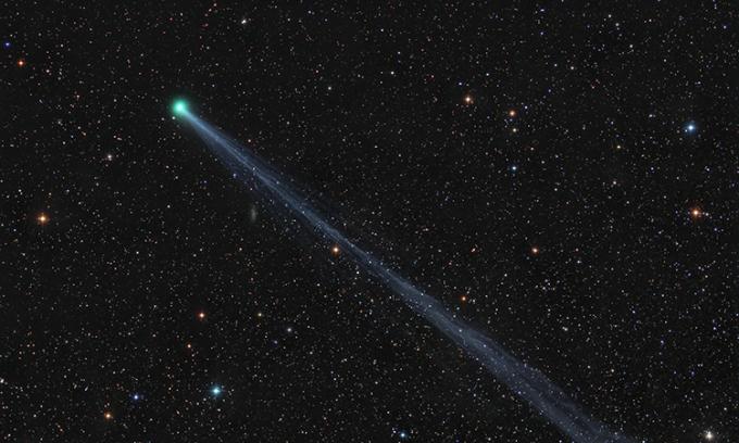Sao chổi C/2020 F8 chụp ngày 2/5. Ảnh:Damian Peach.