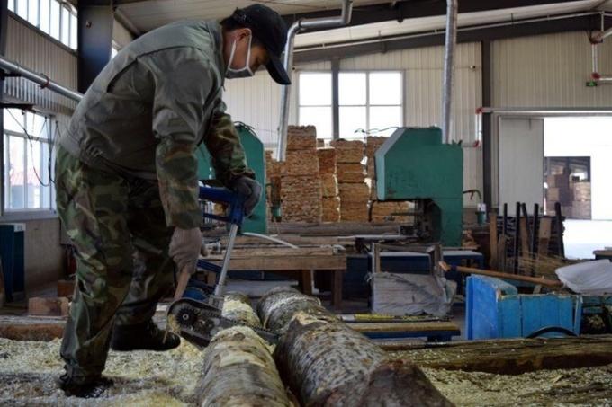 Công nhân xẻ gỗ tại một nhà máy ở thành phố Tuy Phân Hà, tỉnh Hắc Long Giang, Trung Quốc, ngày 15/4. Ảnh: Reuters.