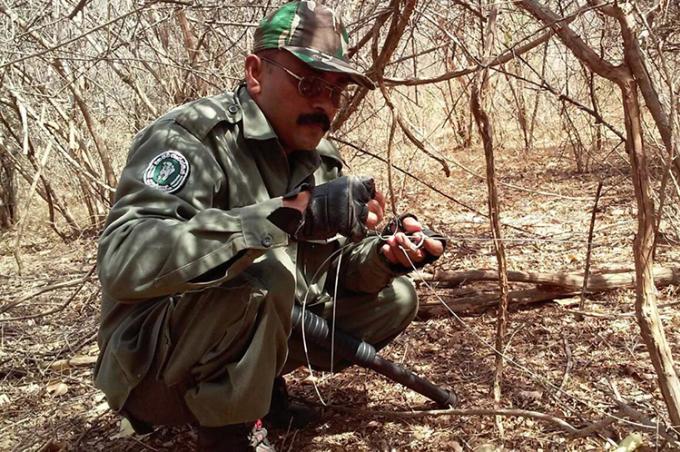 Nhân viên kiểm lâm gỡ một chiếc bẫy động vật ở Vườn quốc gia Yala, Sri Lanka. Ảnh: AP.