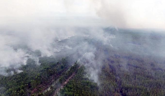 30 ha rừng phòng hộ bốc cháy