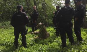 Cảnh sát Anh huy động lực lượng vây bắt hổ giả