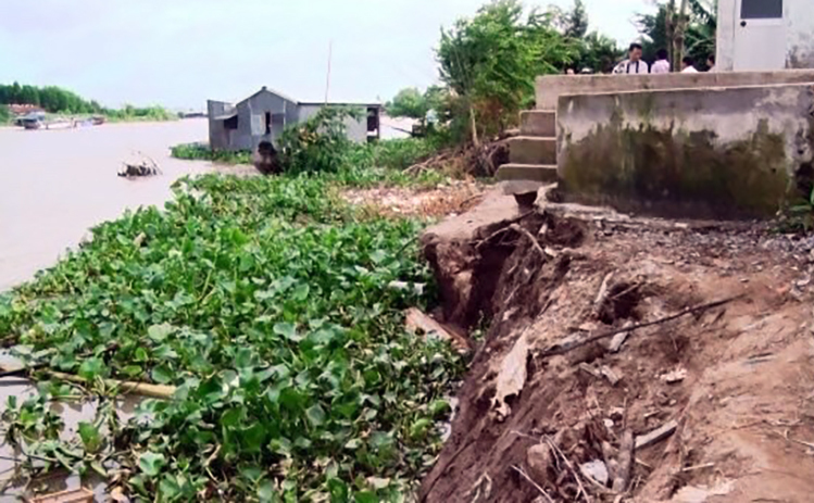 70 tỷ đồng xử lý khẩn cấp sạt lở bờ sông Hậu