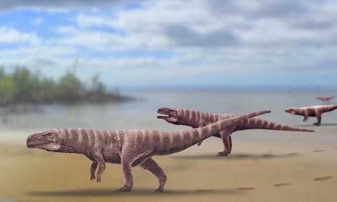 Minh họaBatrachopus grandis đi bằng hai chân sau. Ảnh: CNN.