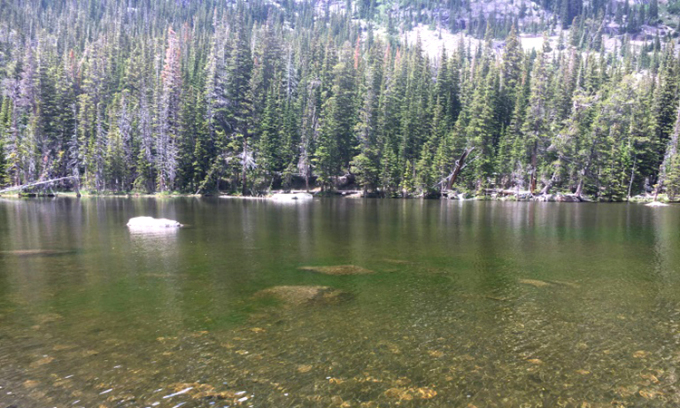 Hồ chuyển màu xanh do tảo nở hoa. Ảnh: Isabelle Oleksy.