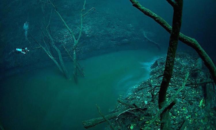 'Dòng sông' ở độ sâu 30 m dưới nước
