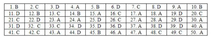 Đáp án 24 mã đề Tiếng Anh thi tốt nghiệp THPT - 10