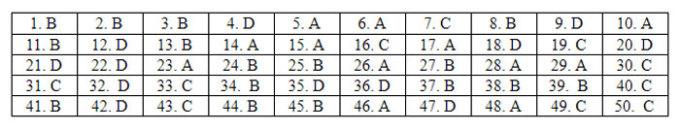 Đáp án 24 mã đề Tiếng Anh thi tốt nghiệp THPT - 12