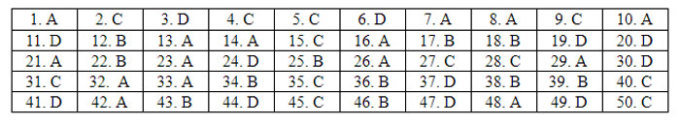 Đáp án 24 mã đề Tiếng Anh thi tốt nghiệp THPT - 22