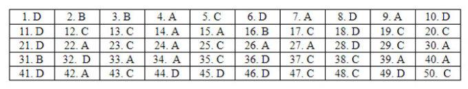 Đáp án 24 mã đề Tiếng Anh thi tốt nghiệp THPT - 20