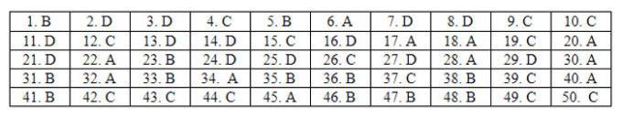 Đáp án 24 mã đề Tiếng Anh thi tốt nghiệp THPT - 38