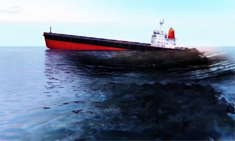 Nguy cơ thảm họa sinh thái từ vụ tràn dầu Mauritius