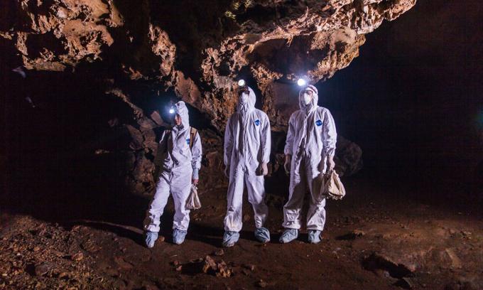Nhóm nhà khoa học của EcoHealth Alliance, tổ chức của Mỹ nhiều năm nghiên cứu về virus ở loài dơi, tại một hang dơi ở tỉnh Quảng Đông, Trung Quốc. Ảnh: EcoHealth Alliance.