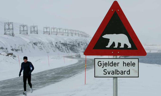 Một biển cảnh báo nguy hiểm về gấu Bắc Cực trên quần đảo Svalbard. Ảnh: Reuters.
