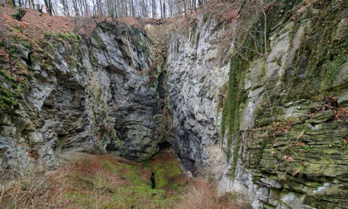 Hranice Abyss - hang động nước ngọt sâu nhất hành tinh - nằm trong rừng cây ở Czech. Ảnh: IFL Science.
