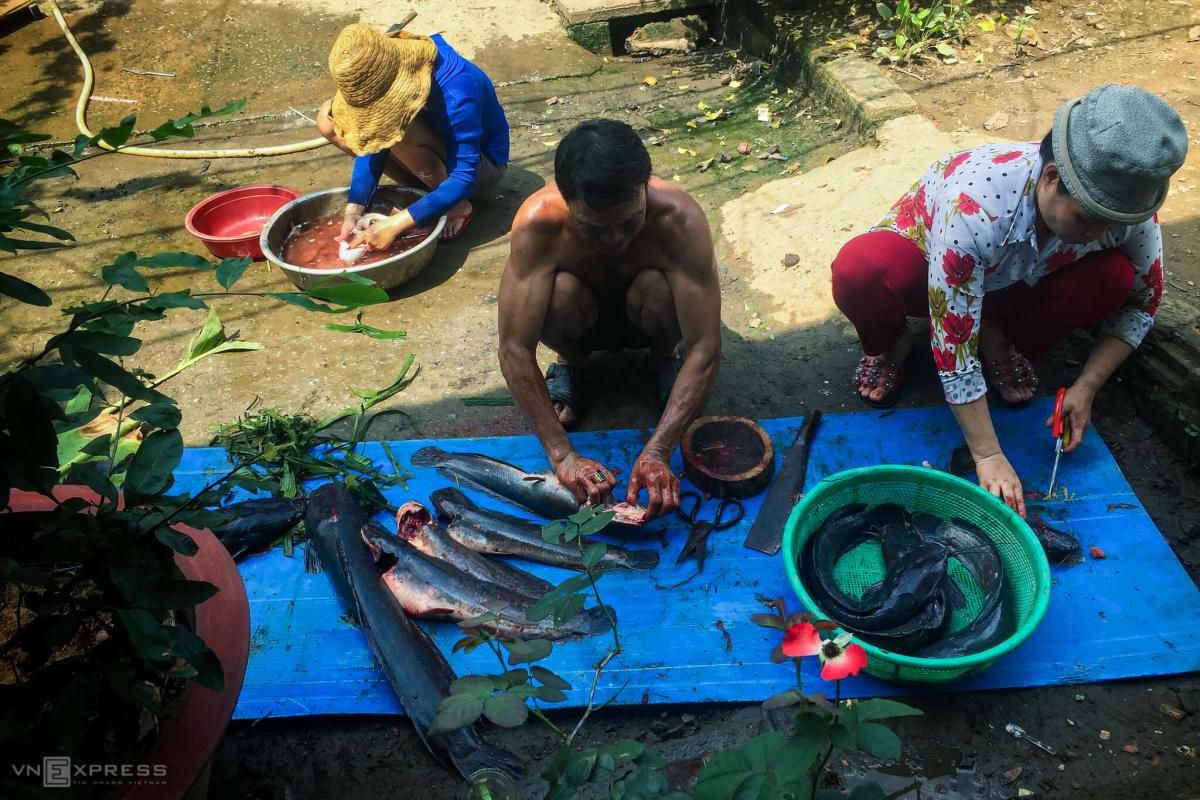 Bắt cá, hái rau dại mưu sinh ở Sài Gòn