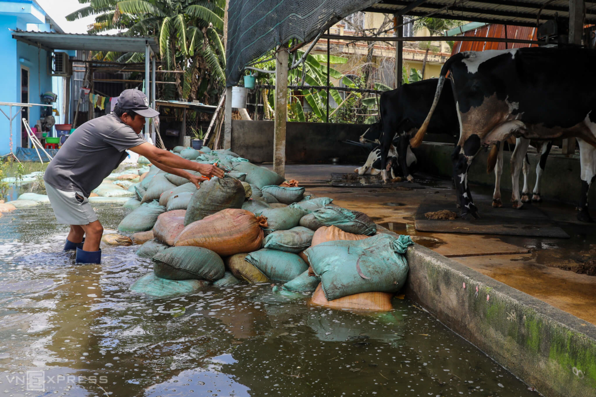 Khu dân cư ngập suốt hai tuần ở Sài Gòn