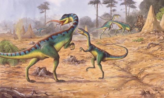 Cuộc đại tuyệt chủng cuối kỷ Tam Điệp góp phần thúc đẩy khủng long sinh sôi. Ảnh: CNN.