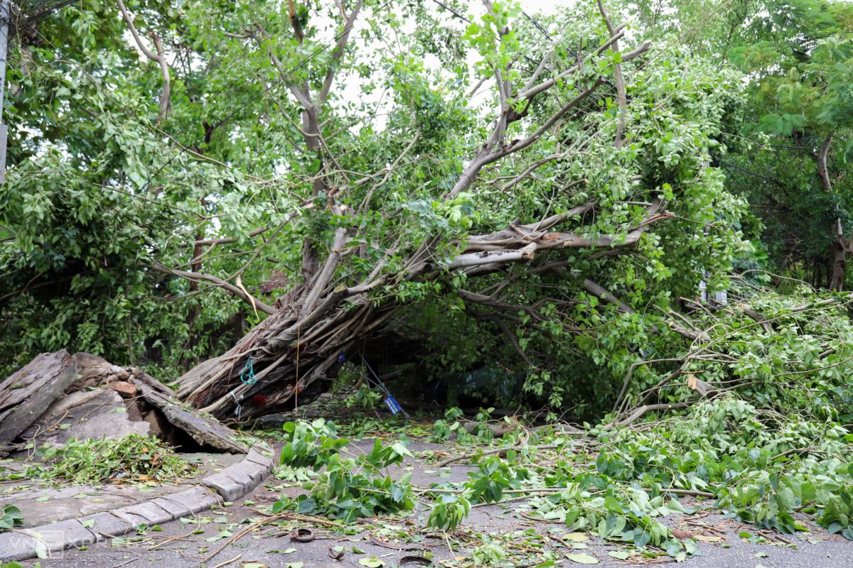 Đường phố Huế tan hoang sau bão Noul