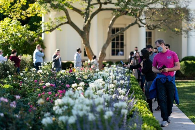 Hoa trong khu vườn ở bãi cỏ phía nam của Nhà Trắng. Ảnh: Twitter/FPOTUS