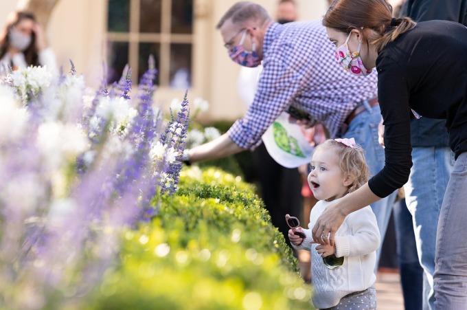 Một em bé thích thú nhìn ngắm hoa nở trong khu vườn ở Nhà Trắng. Ảnh: Twitter/FPOTUS