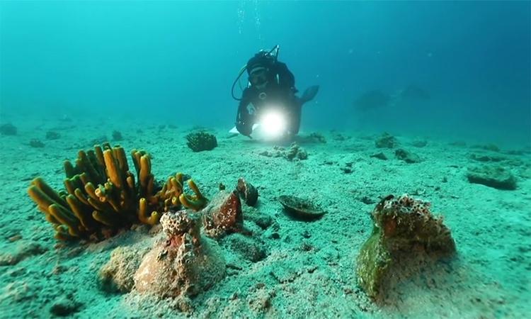 Phát hiện 'kho báu' thời đồ đồng dưới đáy biển