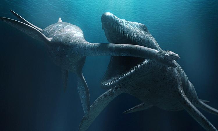 Mô phỏng cuộc tấn công của 'quái vật' mạnh nhất đại dương