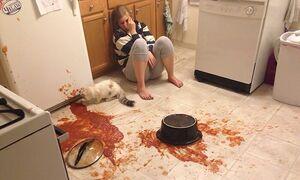 Loạt món ăn thảm họa của những người ghét bếp