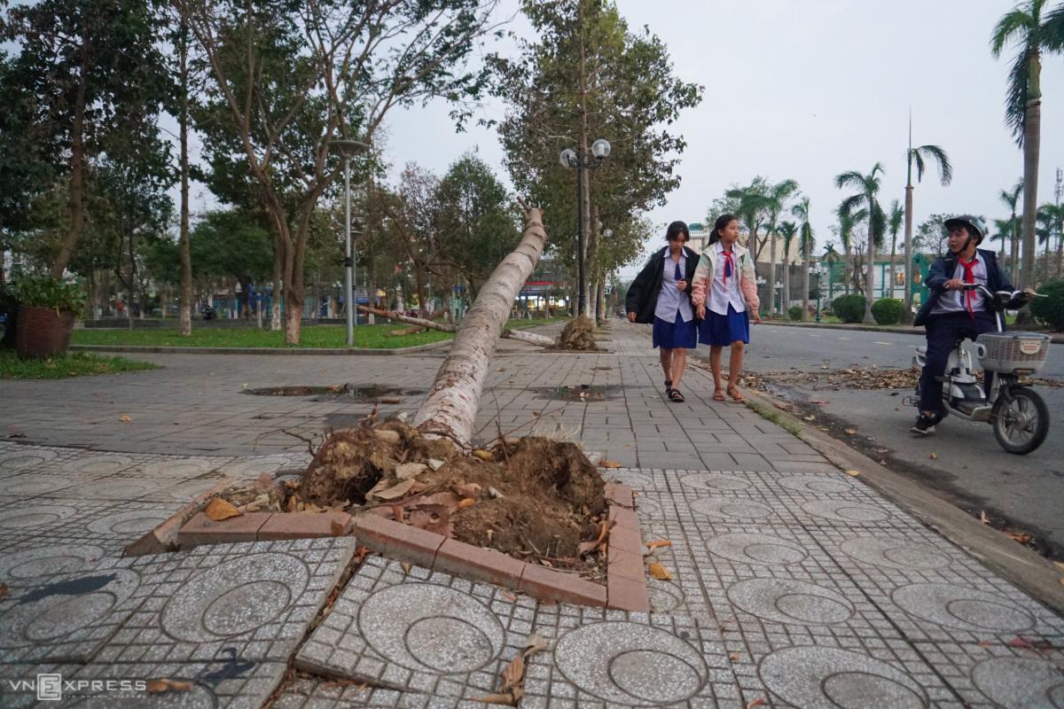 Quảng Ngãi một tuần sau bão Molave