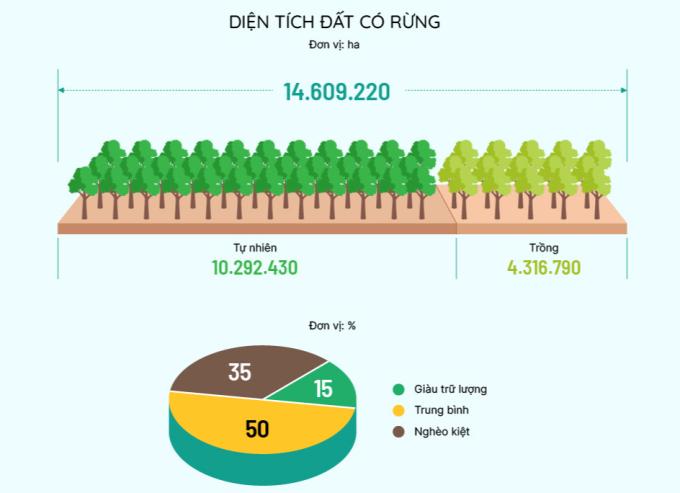 Click để xem hiện trạng rừng Việt Nam. Đồ họa: Việt Chung