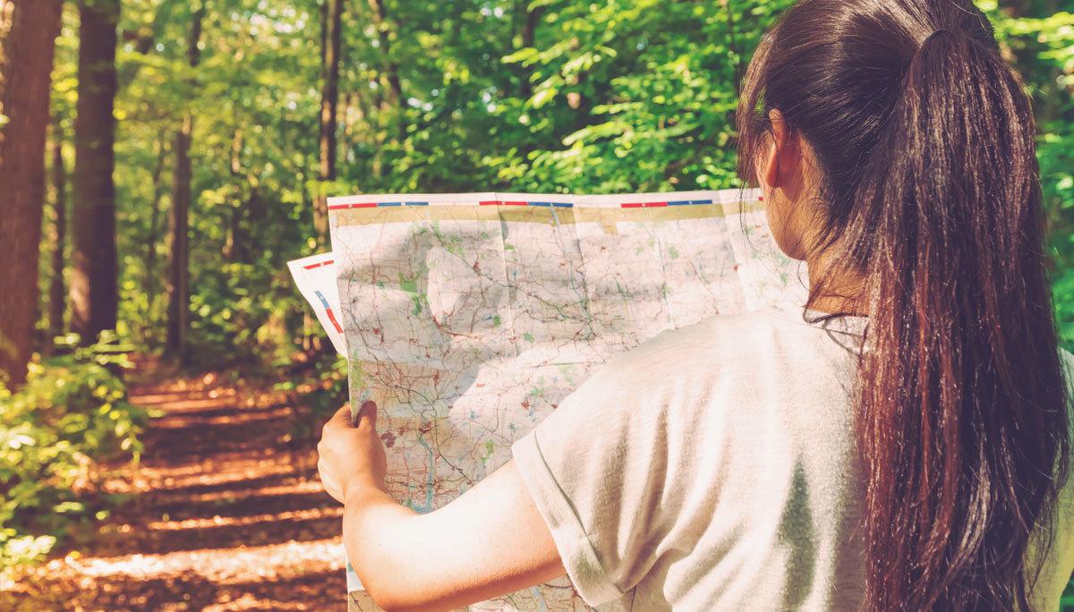 Cách thoát hiểm khi bị lạc trong rừng, núi