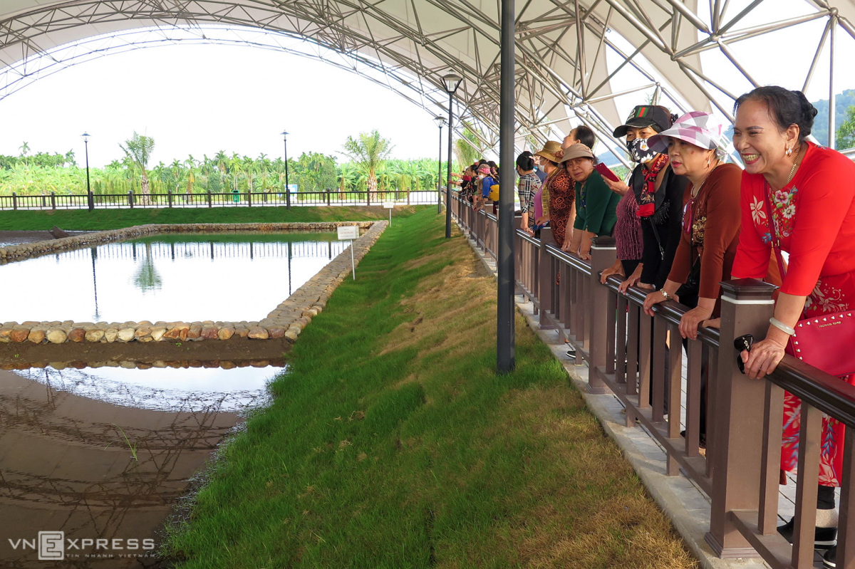 Bãi cọc Cao Quỳ thu hút khách tham quan