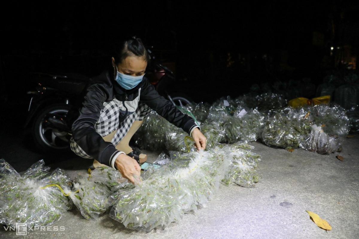 Chợ đêm bán côn trùng ở Sài Gòn