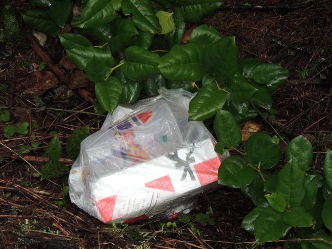 Túi rác tại hiện trường tìm thấy thi thể. Ảnh: Benton County Sheriff's Office.