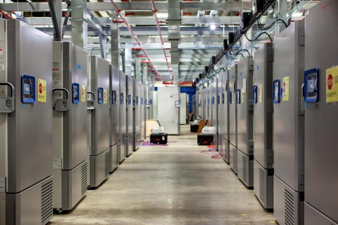 Các dãy tủ lạnh chuyên bảo quản vaccine Covid-19 trong nhà máy Pfizer. Ảnh: Reuters.