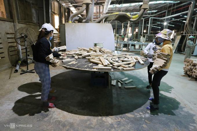 Nhà máy chế biến gỗ của Công ty cổ phần đầu tư và phát triển Lâm nghiệp Quảng Nam đang sản xuất gỗ trồng. Ảnh: Đắc Thành.