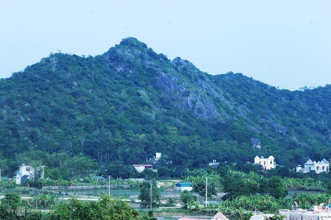 Khu rừng đá vôi ở phường Tân Bình, TP Tam Điệp. Ảnh: Tất Định.