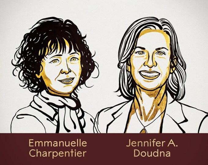 Hai nhà khoa học nữ được vinh danh giải Nobel Hóa học 2020. Ảnh:Nobel Prize.