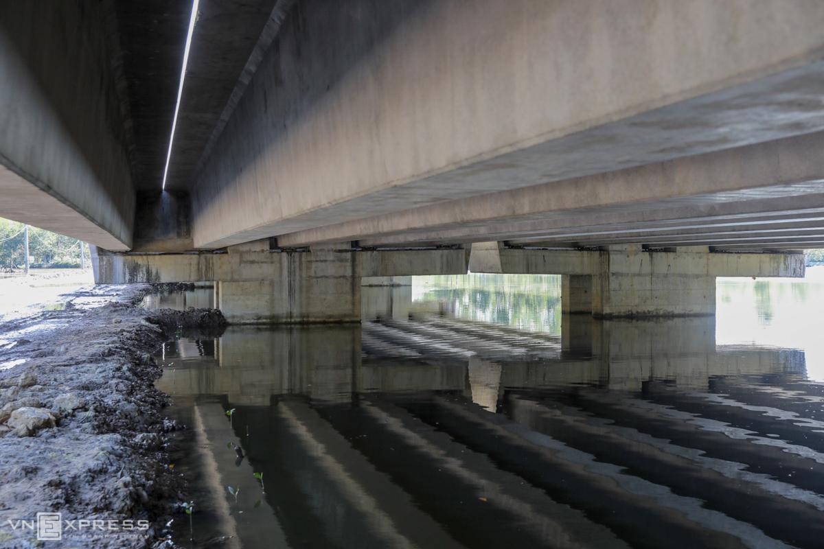 Công trường tuyến cao tốc xuyên rừng ngập mặn