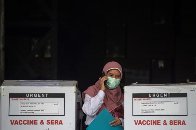 Nhân viên y tế kiểm tra các thùng vaccine của Sinovac tại thành phố Surabaya hôm 13/1. Ảnh: AFP.