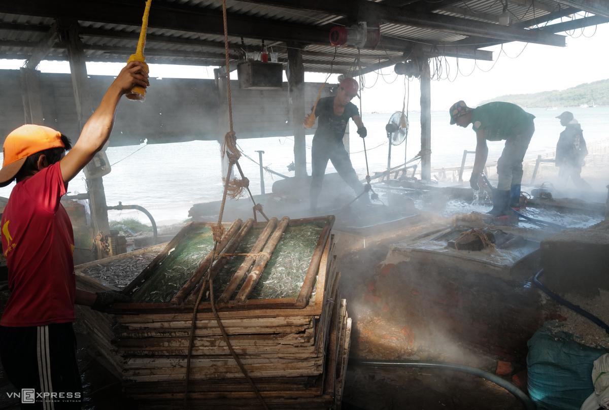 Vựa cá cơm khô trên
