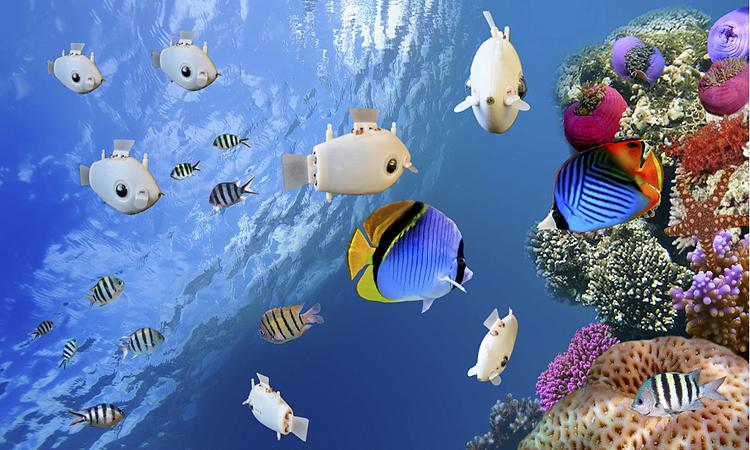 Cá robot in 3D có thể bơi theo bầy