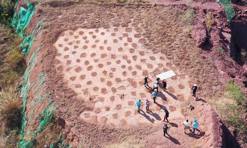Phát hiện hàng trăm dấu chân khủng long 80 triệu năm tuổi