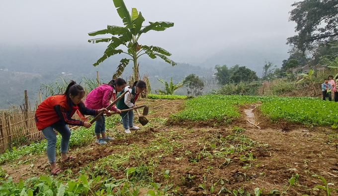 Vừa hết lứa cuối năm, nhóm học sinh lớp 9B lại cặm cụi cuốc đất chuẩn bị cho đợt gieo giống mới. Ảnh: Lê Hoàng.