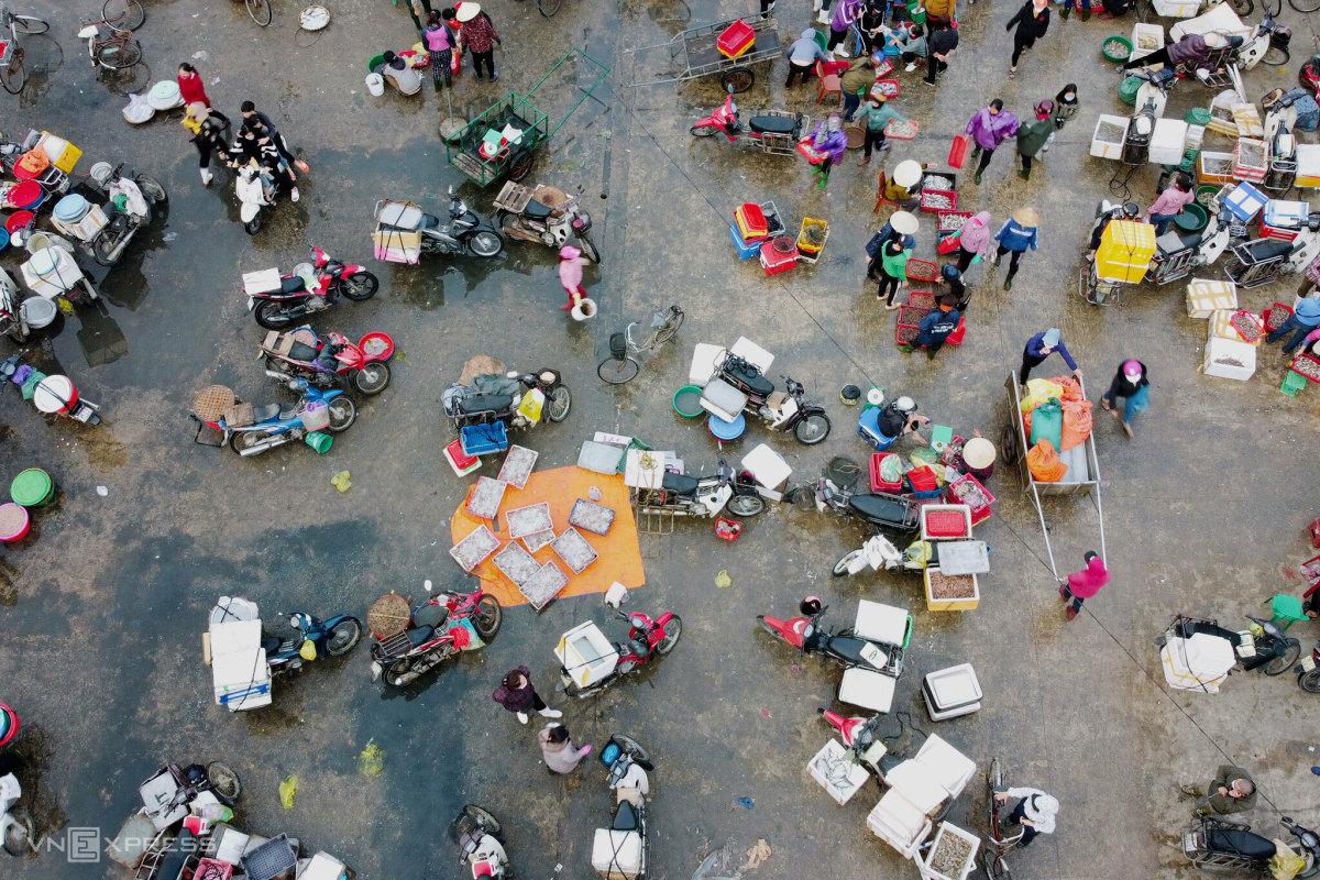 Chợ cá miền Trung nhộn nhịp ngày cận Tết