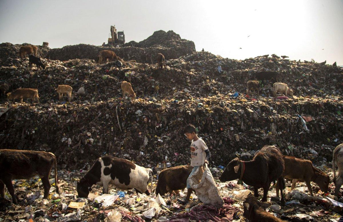 Một ngày của cậu bé nhặt rác Ấn Độ